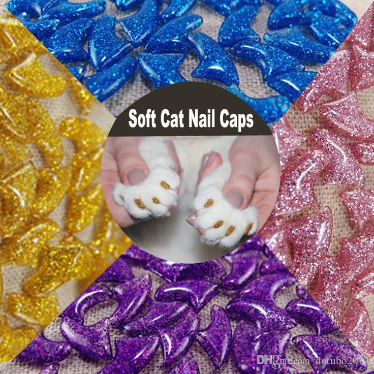 38 best Cat nail caps images on Pinterest | Cat nail caps, Cat nails ...