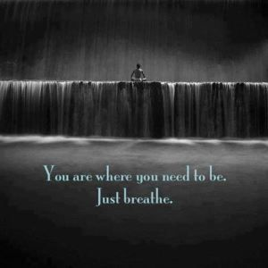 you are where you need to be... breathe