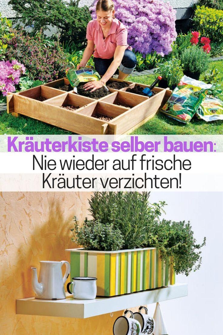 Kräutergarten Küche Selber Bauen