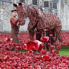 Amazing visuals to switch all on to any conflict and remember the men women and BOYS injured or Killed in the name of Our Country - Joey star of War Horse at the Tower of London, photo by Alex Rumford