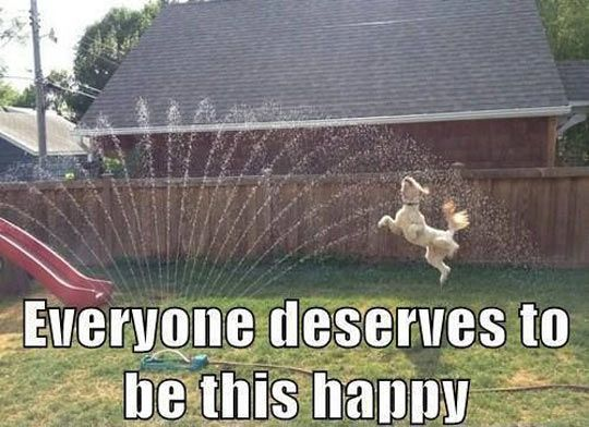 I wish I was this happy…