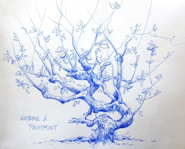 BB-Aquarelle: Croq and Mob : Arbre à Paimpont