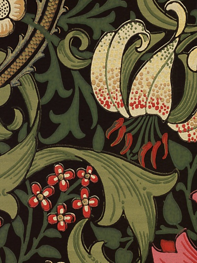 Buy Sanderson Wallpaper, Morris & Co Golden Lily, Charcoal / Olive, 210403 online at JohnLewis.com - John Lewis