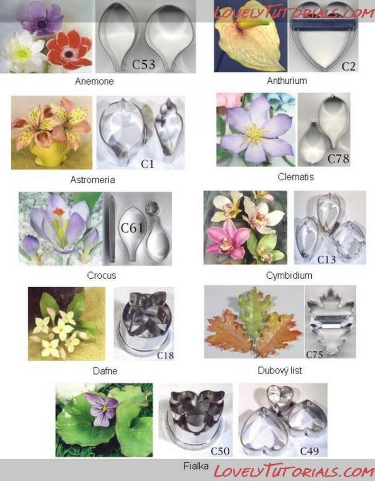 sugar flowers tutorial