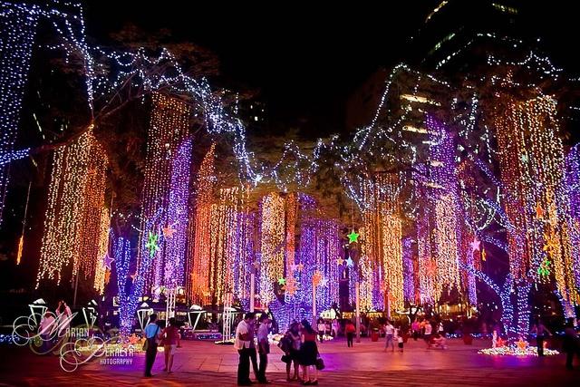 Christmas Lights Tucson