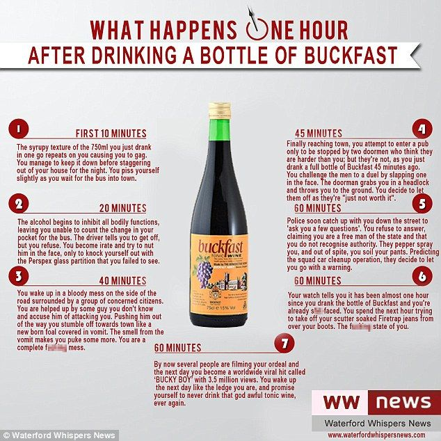 What happens within an hour of drinking buckfast? At home this really is hilarious