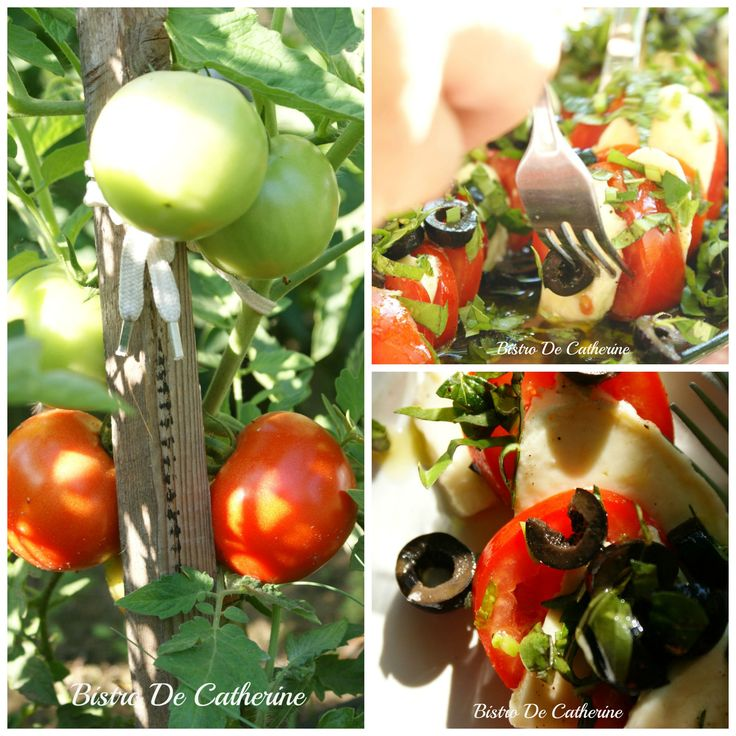 Własne Pomidory Ekologiczne #BistroDeCatherine
