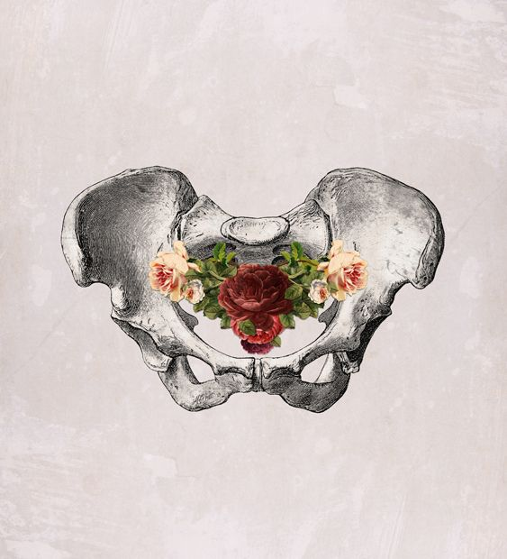 from 'anatomy and roses' series, MizEnScen