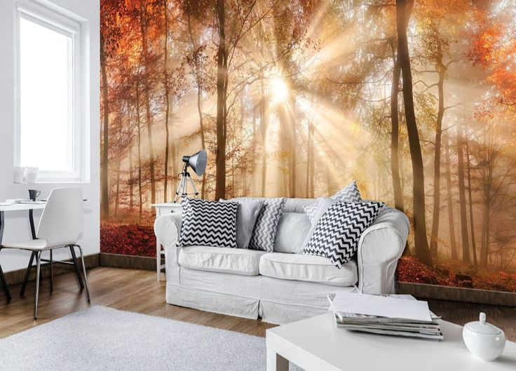 Autumn Forest Large Selection Of Giant Size Wall Murals. More Than 1000  Wallpapers U0026 Full Wall Size Photo Murals, Forest View Non Woven, Paper  Wallpapers ... Part 70