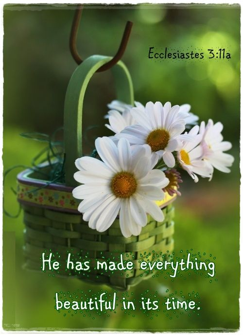 He has made everything beautiful in its time.