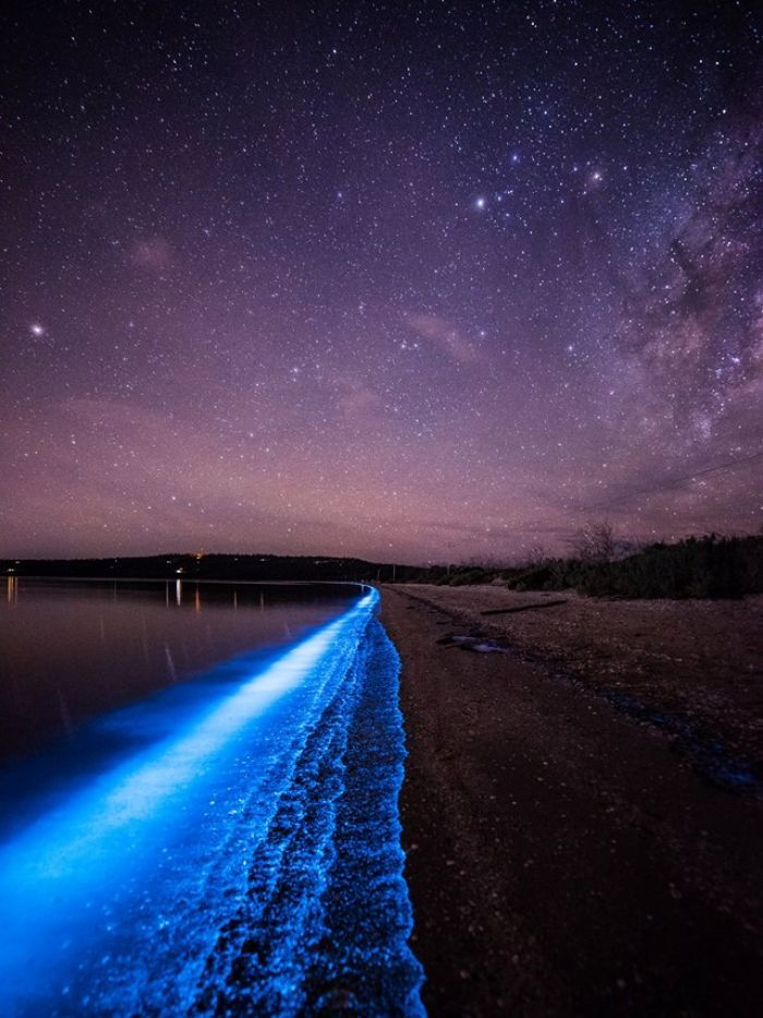 Sea Sparkles are lighting up the River Derwent in Tasmania. The phytoplankton glow blue and put on a show for photographers. Image: Matt Holz.