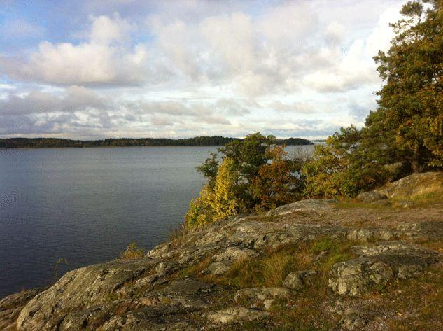Kyrkhamnområdet ligger mellan Hässelby Villastad och Järfälla kommun och gränsar till Görvälnkilen, som är en av länets gröna kilar. Den vita linjen på bilden visar den föreslagna reservatgränsen. Reservatet blir 107 ha stort