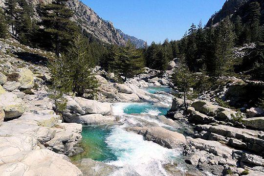 Gorges de la Restonica, près de Corte. Corse (France)