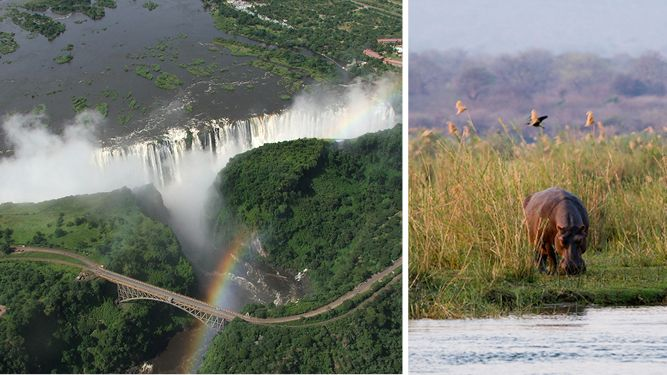 Should I Travel to Zimbabwe? Don't ask, just go! http://www.go2africa.com/africa-travel-blog/30930/should-i-travel-to-zimbabwe
