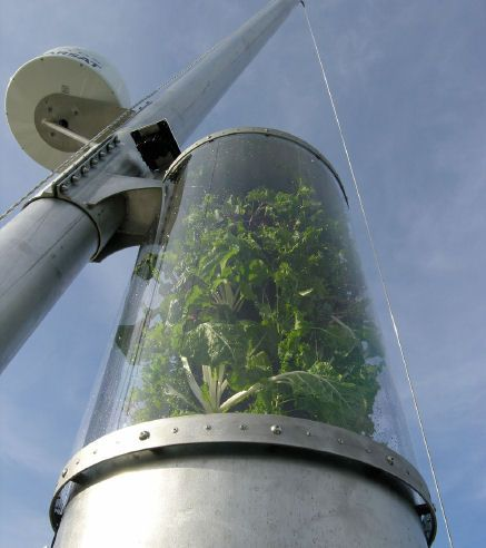 Grow Greens at Sea - Inka Cylinder Garden, designed for boats and yachts