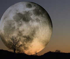 moon.: Harvest Moon, Super Moon, Beautiful, Fullmoon, Full Moon, Things, Photo, Supermoon, Moonlight