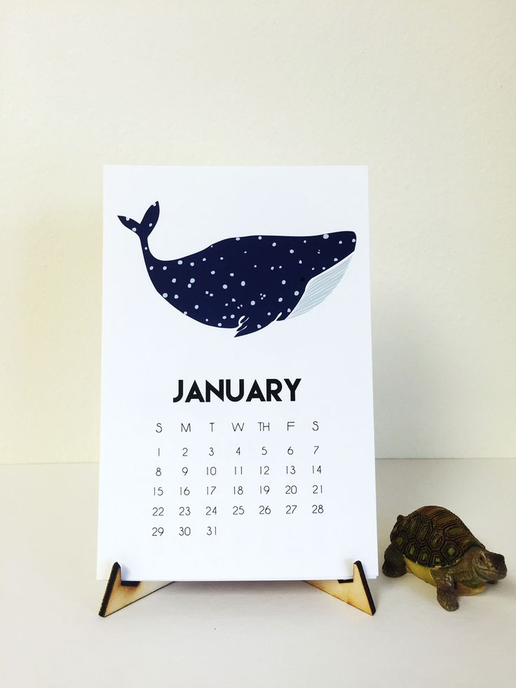 Under The Sea Desk Calendar Features 12 Sea Creature Designs Includes a display…