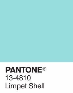 PANTONE 13-4810 Limpet Shell - Fashion Colour Report Primavera 2016