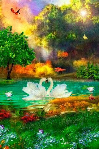 Swan GIF
