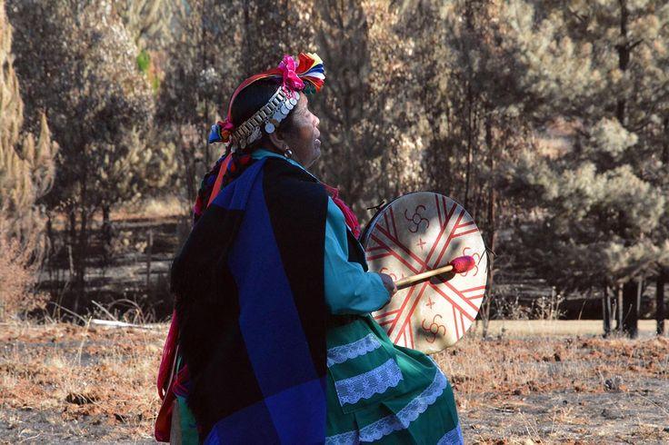 Machi Luisa Huircaleo de Futa Rincón, Lumaco.
