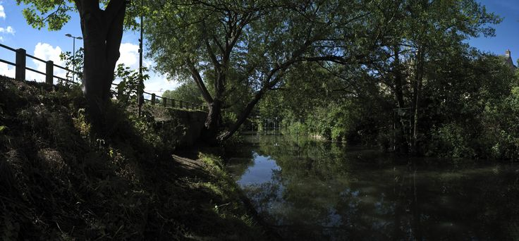 Frome Town Council adopted the River Corridor Strategy in 2013. This strategy was prepared and written by a local group; the Friends of the River Frome. Photo by David Partner http://www.fromeriverfriends.org.uk/