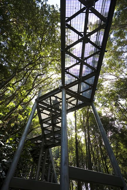 Alexandra Arch & Forest Walk By LOOK Architects – 15 | Designalmic
