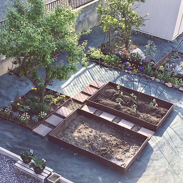 ナカトミ ガーデンフレーム1150mm の商品情報 Roomclip ルーム