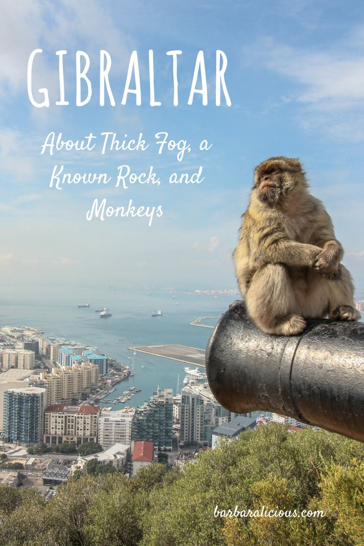 Gibraltar is part of the UK, but in Spain overlooking the Morrocan coast. British weather welcomed me, but I was lucky to find sunshine in the afternoon so I could climb the famous and meet the monkeys.