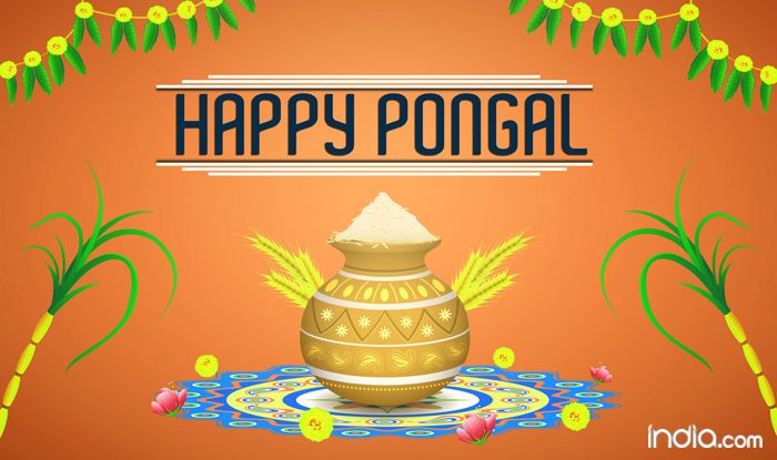 Pongal 2018: Date Muhurat and Tithi for Thai Pongal the Tamil Harvest Competition