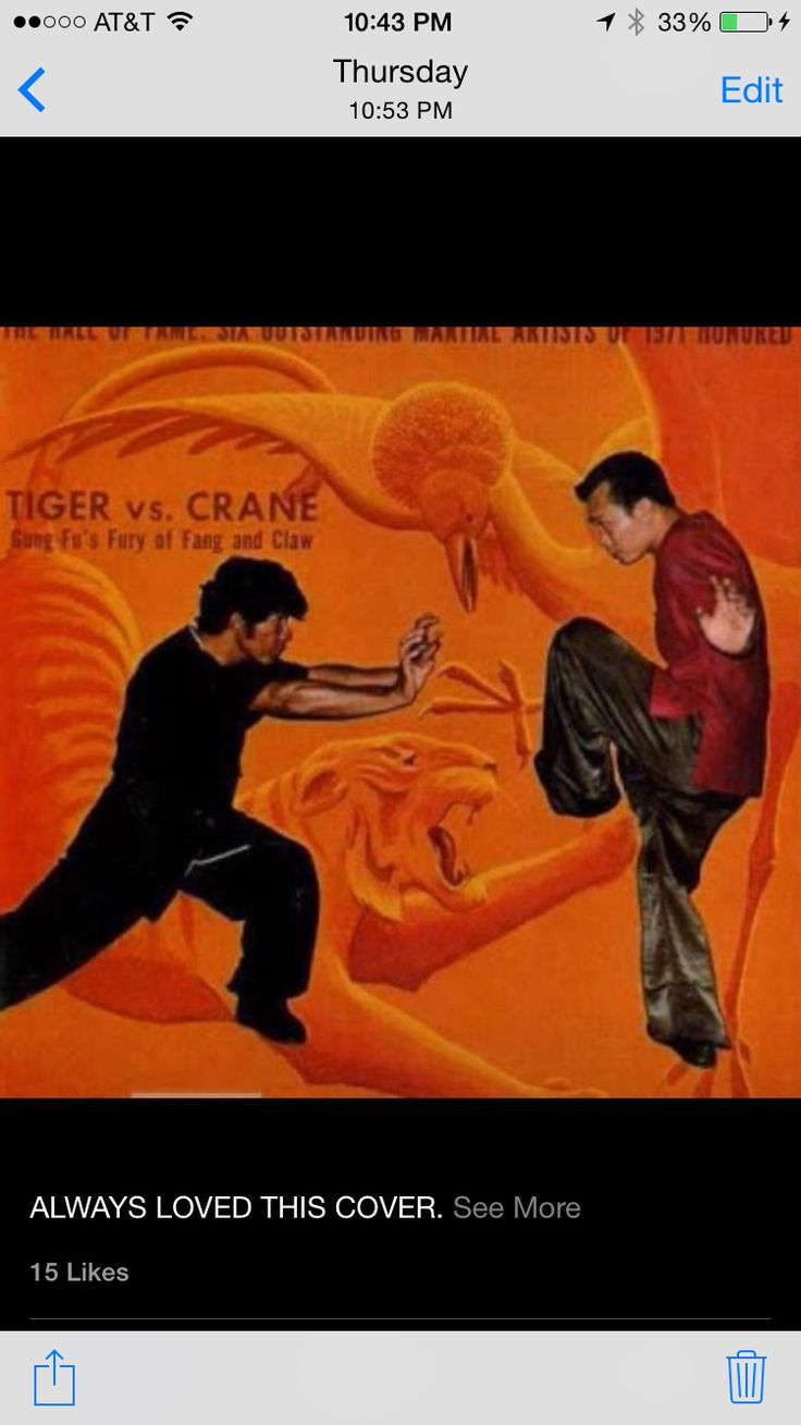 13 best kung fu images on pinterest martial arts kung fu and tiger and crane kung fu one of the most explosive and efficient fighting systems it fandeluxe Choice Image