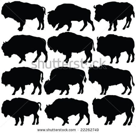 American Bison Silhouette Collection - Vector - 22262749 ...