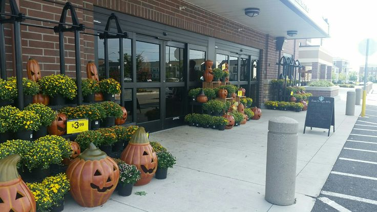 Fall mum and pumpkin display front of store 2016
