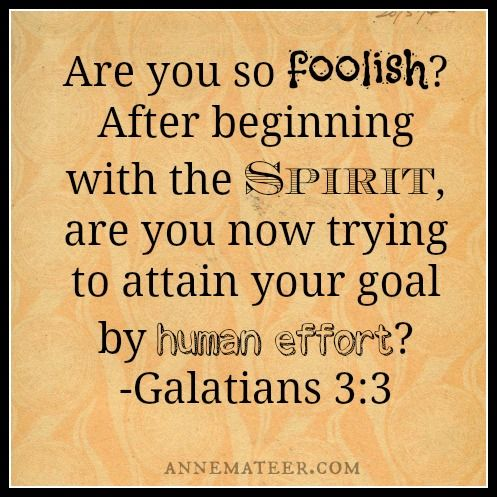 Image result for the galatians