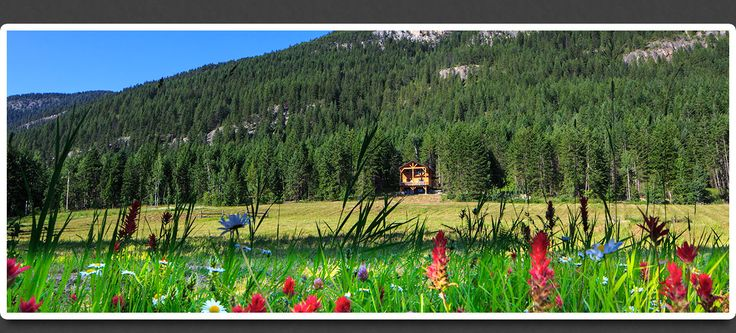 Mount 7 Lodges | Golden, BC | Kicking Horse Mountain Resort | Holidays | Canadian Rockies | Cabins | Chalets | Cottages | Accommodations
