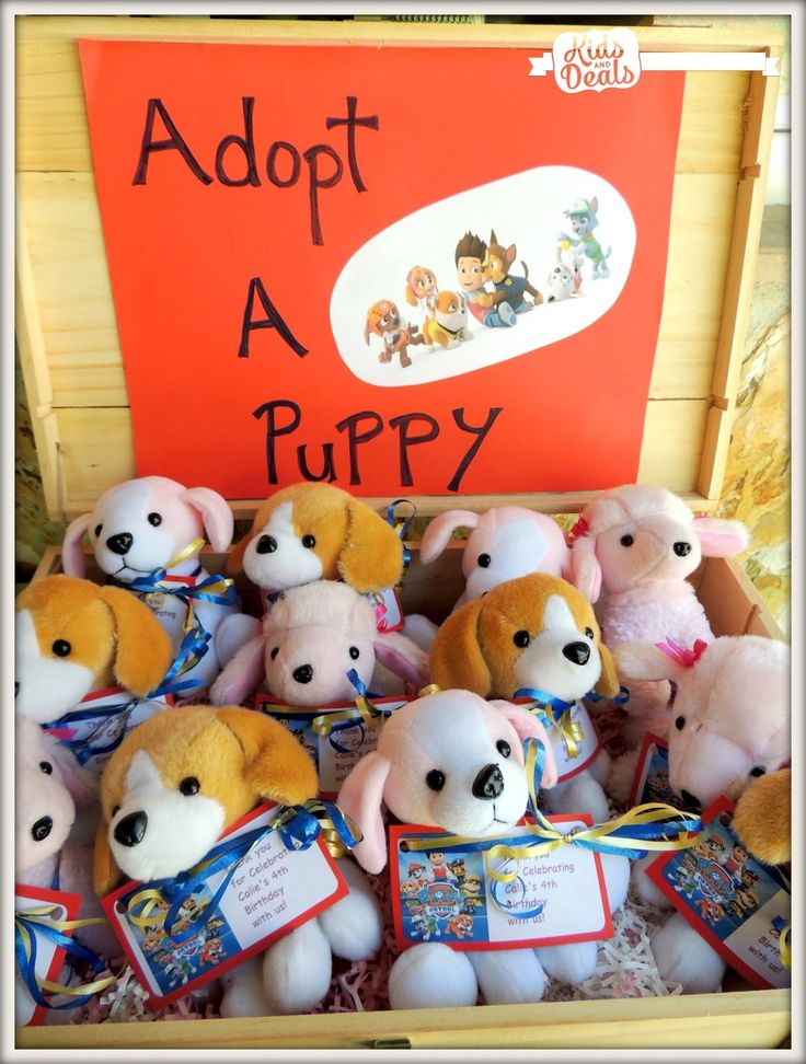 Adopt a Puppy at a Paw Patrol Birthday Party