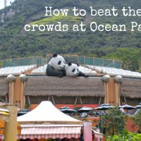A local's inside guide to make the very most of a trip to Ocean Park - hopefully by-passing most of the queues and crowds