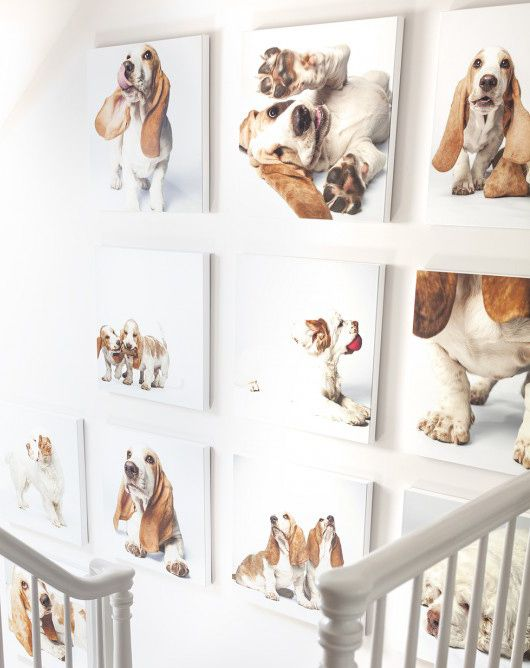 Decking the Halls with the Art of Amanda Jones. Need some wall-art inspiration? We've got the amazing Amanda Jones, Inc on hand to show us how she helped deck the halls at Annie's new house: