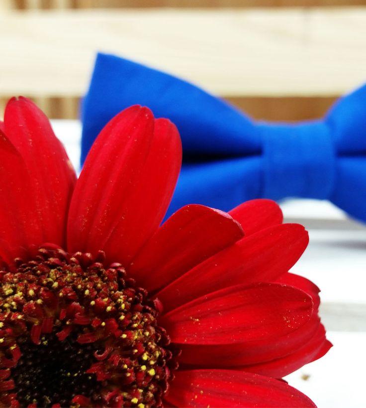 Zestaw ChabroweLove Mucha Minionki Rozrabiają #ek #edytakleist #dodatek #styl #look #boy #men #wedding #dziecko #elegant #handmade #suit #muchasiada #rzeczytezmajadusze #instaman #neckwear #instagood #instaman #finwal #bowtie #bowties #mucha #muchy #prezent #gift #instalike #swieta #naprezent #prezent #handmade #rekodzielo