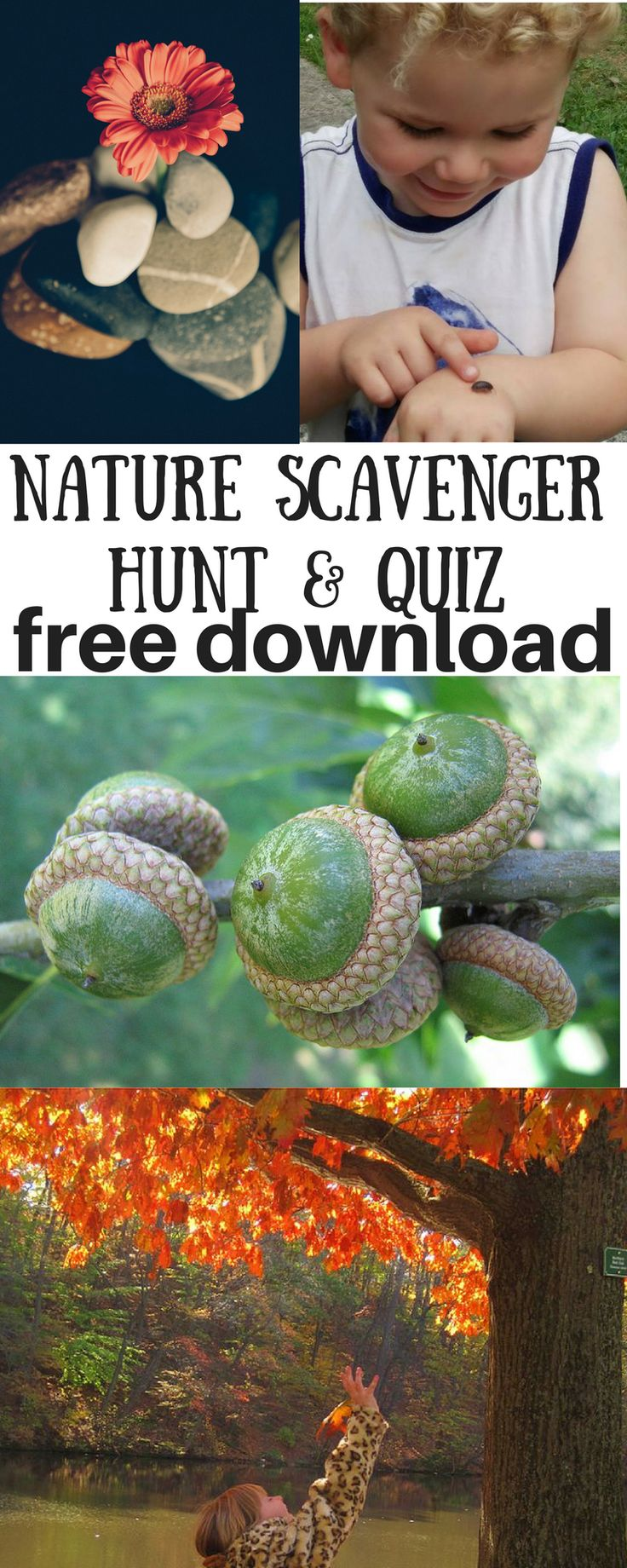 Scavenger Hunt and Quiz for kids - Nature Science - Backyard fun