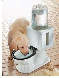 NEW Auto Refilling Ceramic Toilet Water Bowl For Dog / Cat Fits 2 Liter Bottle