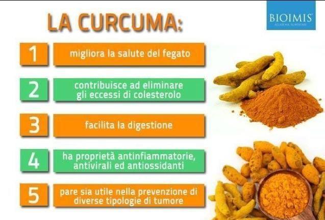 Che cos'è la #Curcuma? E' un genere appartenente alla famiglia delle Zingiberaceae