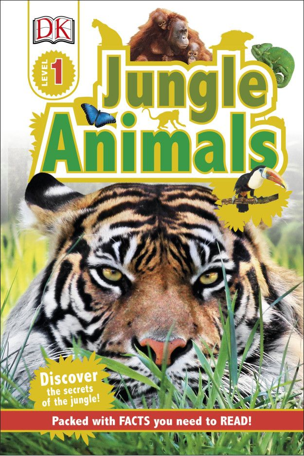 Do you dare to read about the wild animals of the jungle?! Then look no further, because DK Reader Jungle Animals is just for you. It's a level 1 book grabbing the attention of young children to have interest in reading about the colourful birds, gentle giants and the big cats of the jungle!