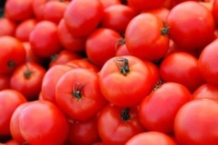 6 Tips for Growing the Best Tomatoes for Sauce: Worth Reading, Garden Ideas, Outdoor Garden, Favorite Places, Books Worth, Growing Tomatoes, Sauce