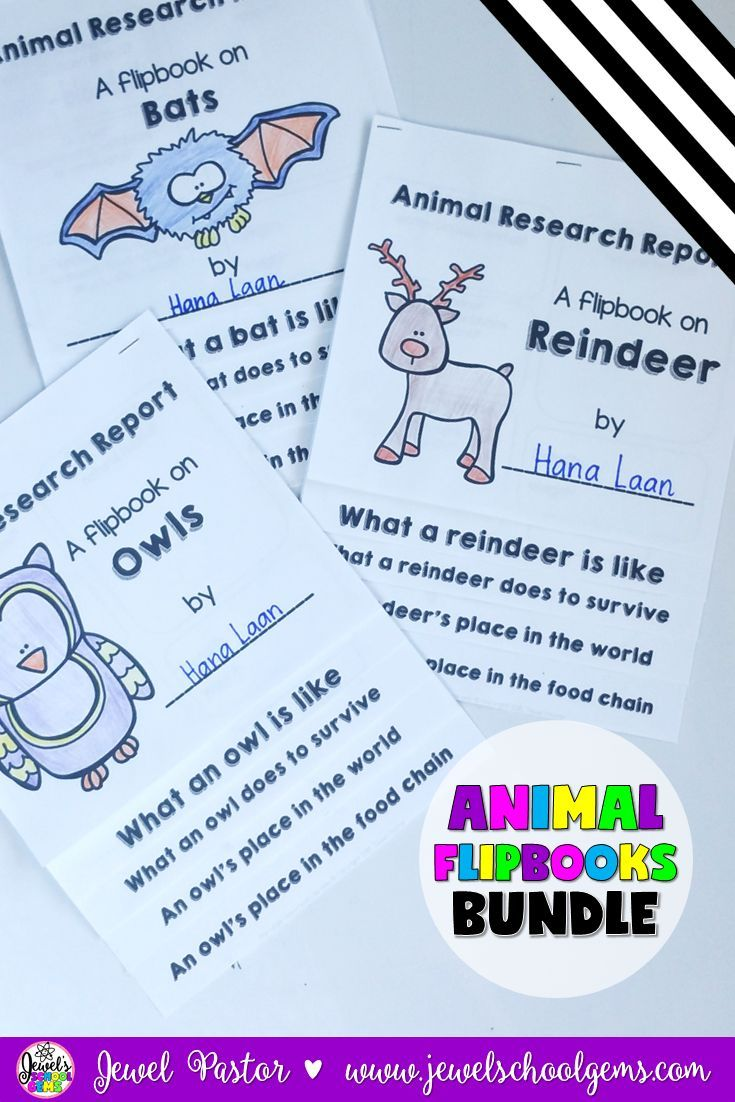ANIMAL RESEARCH by Jewel Pastor | This growing bundle consists of over 40 animal research flipbooks! You get these flipbooks for ONE THIRD OF THE PRICE! What's even better is you get future flipbooks FOR FREE if you buy NOW! I will be increasing the price as I add more flipbooks.  Each research flipbook has 5 pages of black and white templates that can be used to create a research report flipbook on an animal and a grading rubric. | animal research reports | animal reports | animal flip…