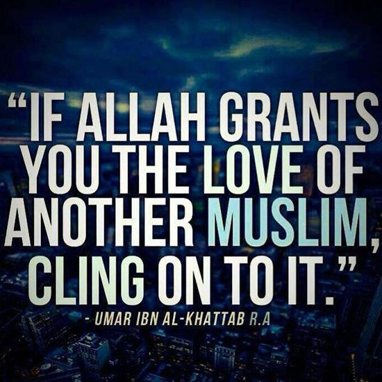 1000+ Islamic Love Quotes On Pinterest
