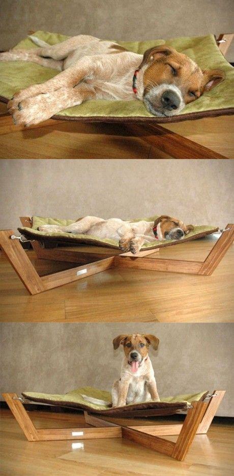 Hunde-Hängematte statt Hundekörbchen. So genießt auch der Hund den Sommer!
