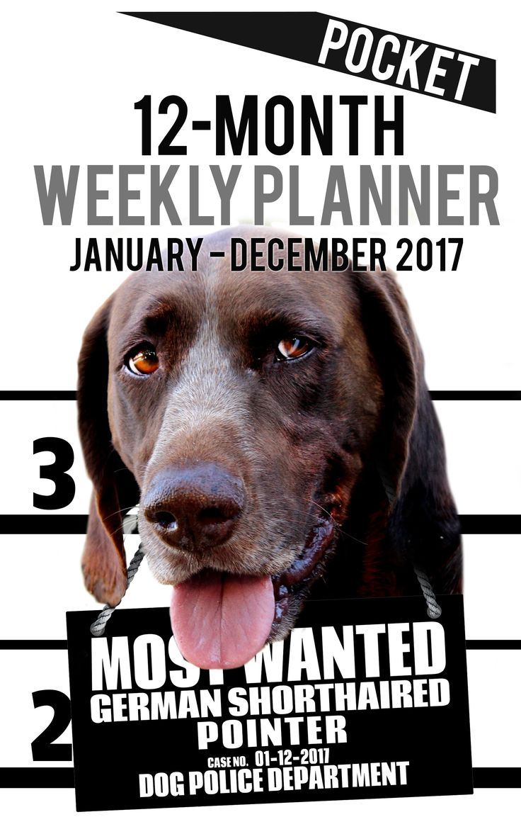 2017 Pocket Weekly Planner - Most Wanted German Pointer: Daily Diary Monthly Yearly Calendar (Dog Planners)  2017 Pocket Weekly Planner for Dog lovers - German Shorthaired Pointer lovers in particular!  Adorable Most Wanted German Shorthaired Pointer image graces the cover of this pocket size cute engagement calendar.  Popular easy to use planner format shows a week-at-a-view to help keep you organized 7 days at a time. This Calendar/planner covers 12 months (January 2017 - December 2017).