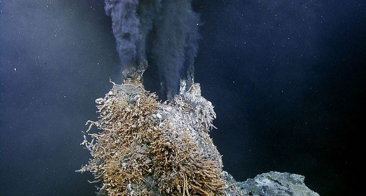 Deep-sea hydrothermal vents more abundant than thought | Science News
