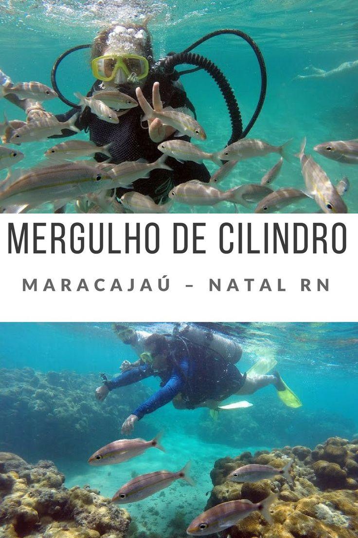 Mergulho em Maracajaú - Natal RN