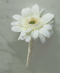 Gerbera Daisy Boutonniere: Daisy Boutonniere, Daisies Boutonnieres